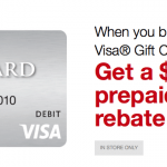 Staples $15 Visa Prepaid Card to Buy $300 in Visa Gift Cards